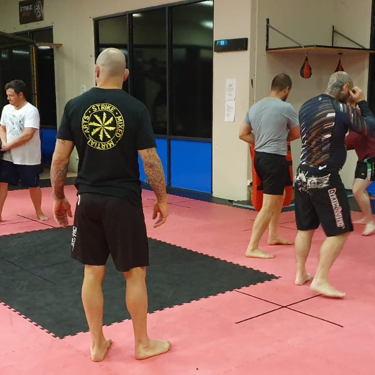 Adults Beginner MMA Program (1)
