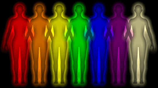 """चित्त और  बुद्धि में क्या अंतर है ? क्या है चित्त और छह प्रकार के  रंगों की धर्म और अधर्म    की """"छ"""