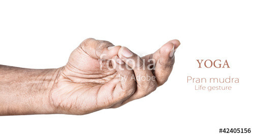 MENTION ENERGY HEALING/MUDRAS TO ACTIVATE THE  LOWER CHAKRAS?PRANAYAMA-22
