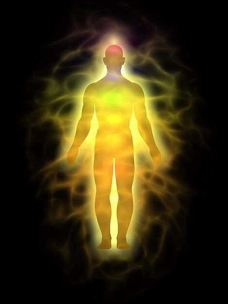 CHECK YOURSELF; - HOW MANY BODIES HAVE YOU DEVELOPED TILL NOW ? EXPLAIN THE ROLE OF  KUNDALINI  WITH
