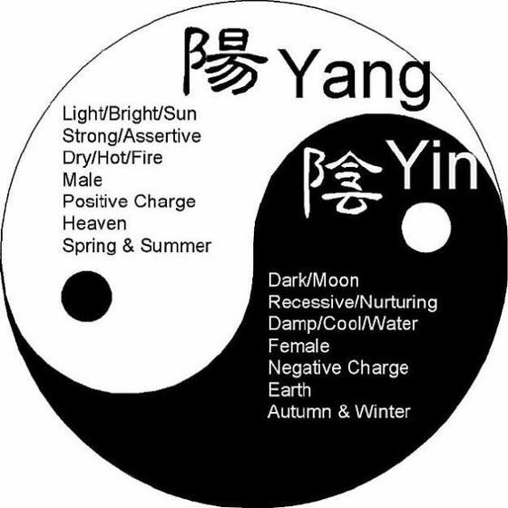 HOW CAN WE BALANCE SHAKTI /SHIVA  OR  YIN /YANG ENERGY?INNER YOGA-49