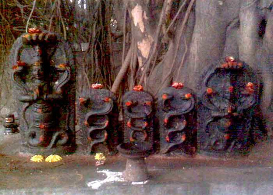 WHAT IS THE SIGNIFICANCE OF NAG PANCHAMI?