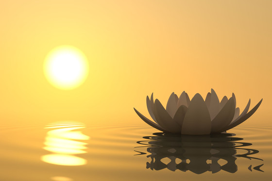 WHAT ARE THE TWENTY IMPORTANT SPIRITUAL INSTRUCTIONS FOR  SADHANA ? (SADHANA FOR  BEGINNERS- 20)
