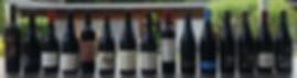 Pinots noirs 2013.jpg