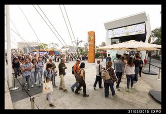 EXPO114.jpg