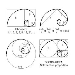 Fibonacci from livesciencedotcom.jpg