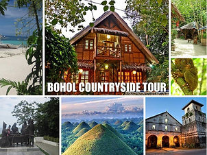 Bohol-Countryside-Tour.jpg