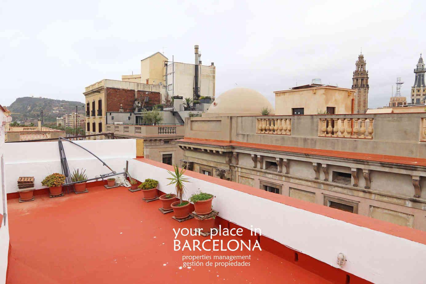 terrado_roof