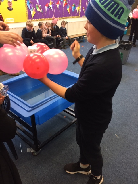 science week with 5th class