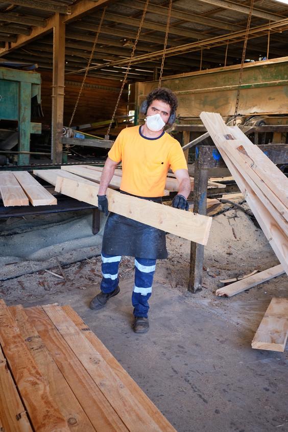 Hayter Sawmill