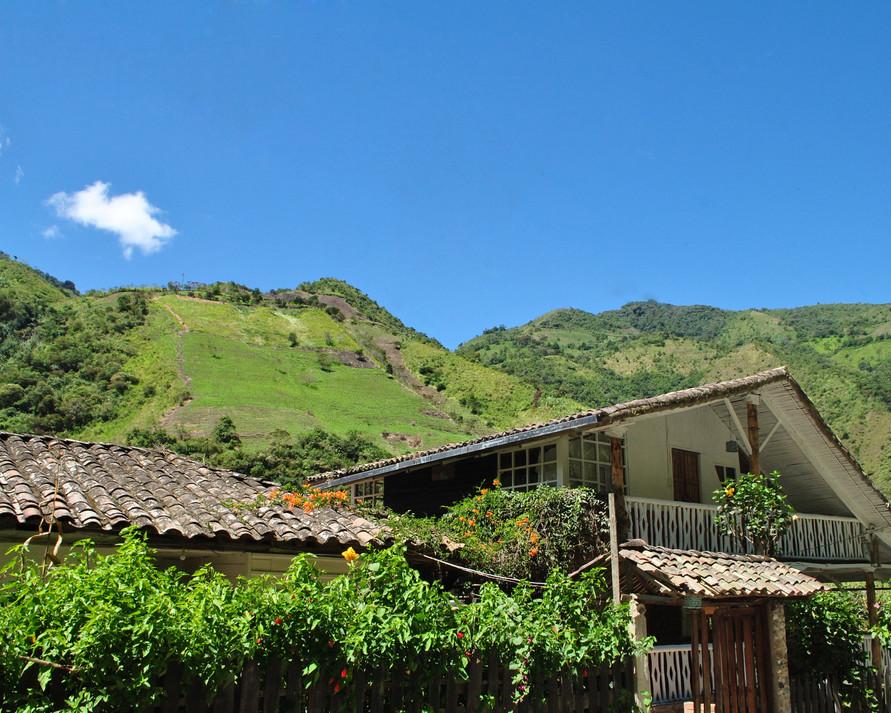 A home for Pacheco