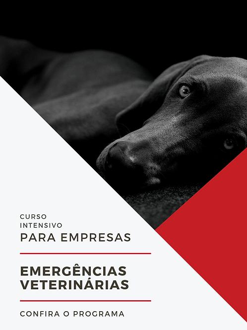 CURSO DE EMERGÊNCIAS PARA EMPRESAS