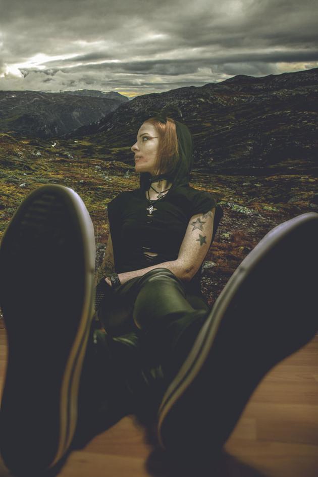 Jenny in Norwegen Composition