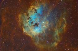 IC 410 - Tadpoles nebula