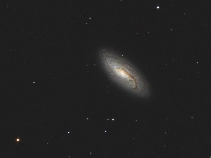 NGC 5005