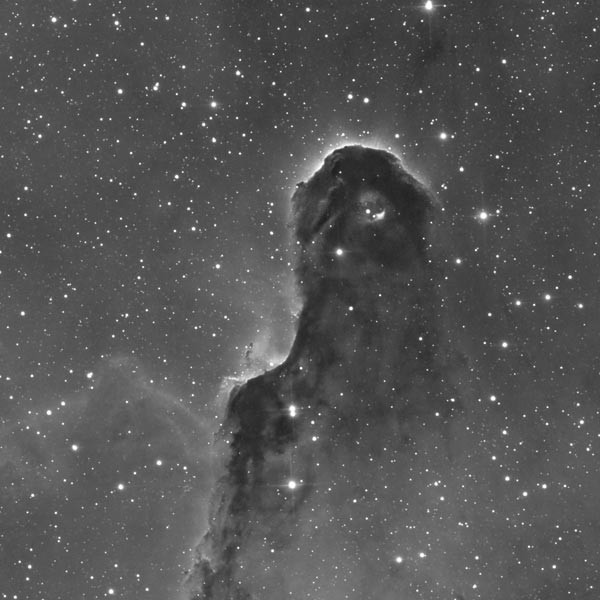IC 1396a - Trunk nebula