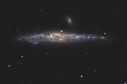 NGC 4631 - Galaxie de la Baleine
