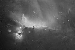 NGC 2024 - Horse head nebula