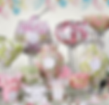 Candy station pastel.png