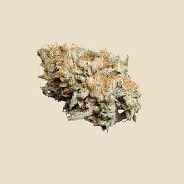 #019 - Ogen   Freshly Baked #76