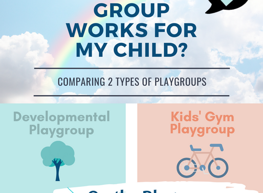 What is a Developmental Playgroup?