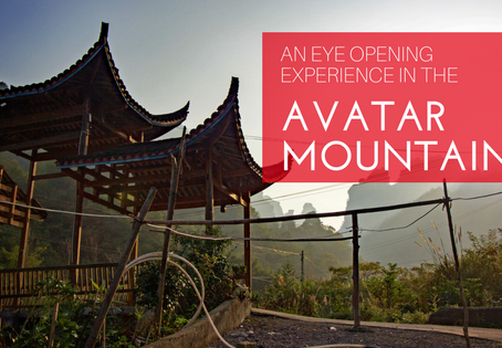 Travel Journal: An Eye-Opening Experience in the Avatar Mountains