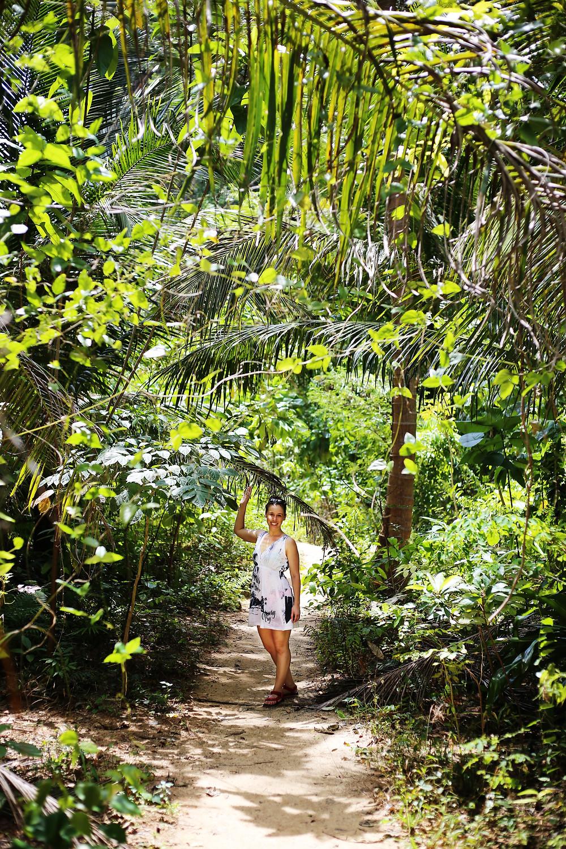 Thai Beaches and Jungles