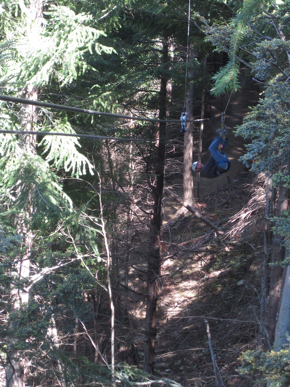 Zip line adrenaline fix in New Zealand