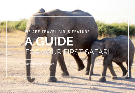 "A Quick Guide to Your First African Safari: Contributing Article for ""We Are Travel Girls"""