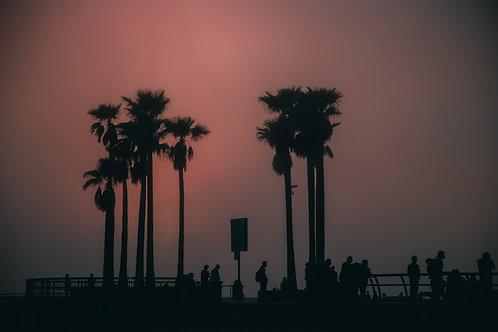 Moody Venice Beach 2