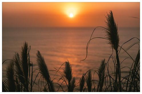 Sunset Oceanside