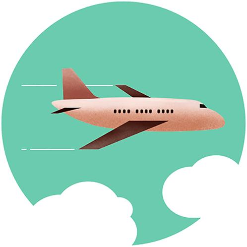flight costs (Flugkosten)