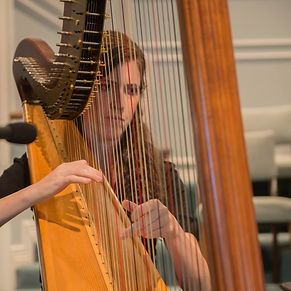 Harpist performing at a concert