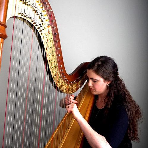 The Composer's Harp Lesson Video Course
