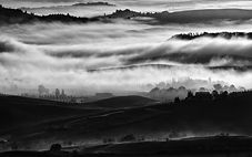 PS PAESAGGIO 140-PAGNOTTELLI-A foggy mor