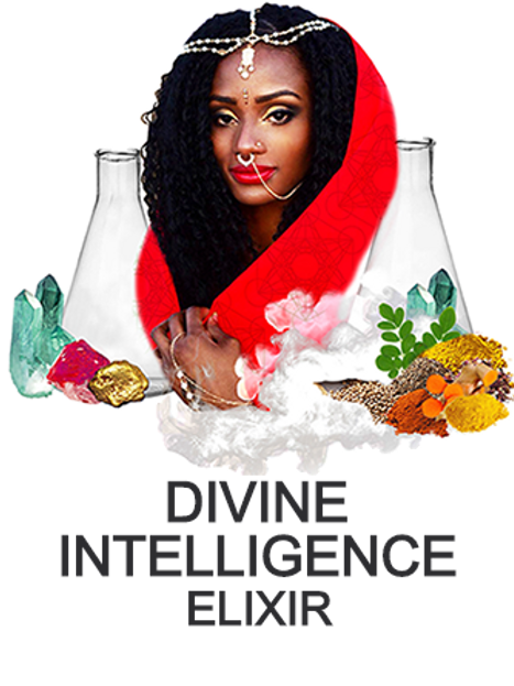Divine Intelligence Bundle (5 Bottles)