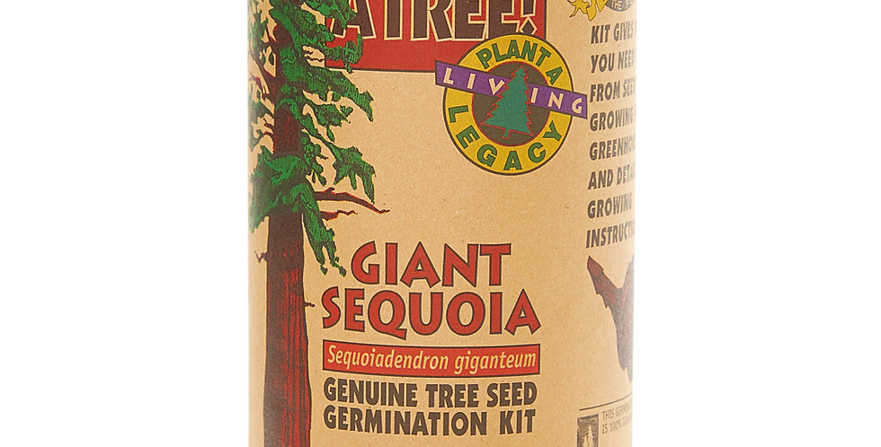 Giant Sequoia Grow Kit
