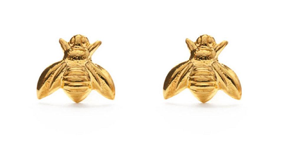 Honey Bee Studs