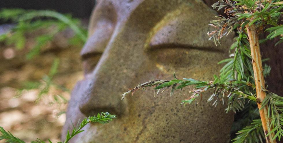 Fragment Buddha Faces
