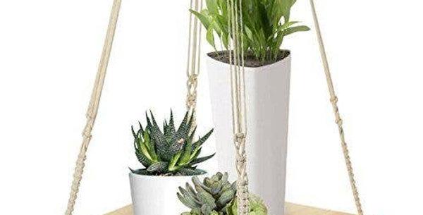 Macrame Plant Shelf
