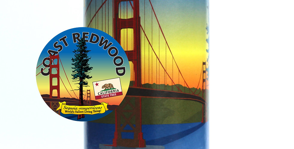 California Redwood Tree Grow Kit