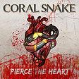 coral snake.jpeg
