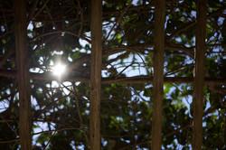 A Luz do Amanhã - Light of Tomorrow