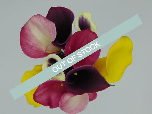 Rainbow Calla Bouquet - Half Pail