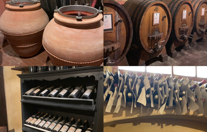 Montefalco Winery