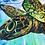 "Thumbnail: Flying Turtle - Artist Print 11x14"""