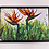 Thumbnail: Bird of Paradise- Magnet Large