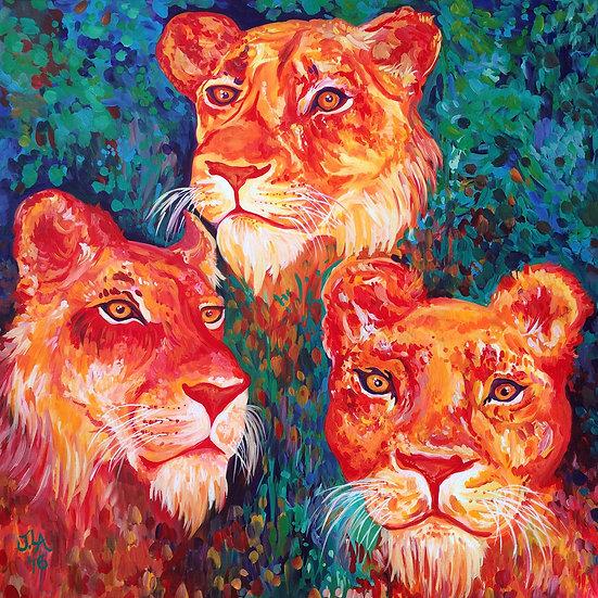 "Three Lioness Queens - Original 24x24"""