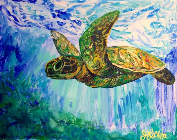 Flying Turtle