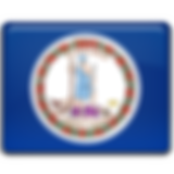 Virginia-Flag-256.png